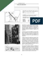 almendrales.pdf