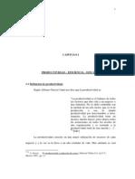 CAPITULO I . Productividad - Avance