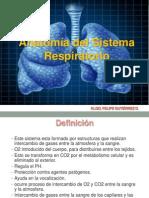 Clase Nº 1. Anatomia Respiratoria.pdf