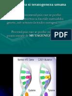 Maladii Si Mutatii Genomice