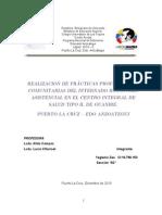 Transcripción Prácticas profesionales informe comunitario alida campos