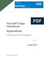 Iapt Data Handbook Appendicies v2