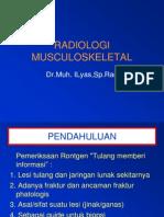 sistem muskulo