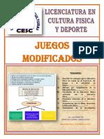 Investigacion Documental_competencias de La Educacion Fisica