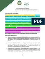 PERFIL_PROFESIONAL_PROG._DE_DOCENCIA_CON_ÉNFASIS_EN_DOCENCIA_SUPERIOR