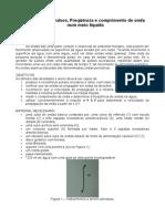 Roteiro 21 - Pulsos Frequencia e comprimento de onda num meio liquido.pdf