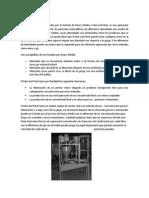 Informe SAF