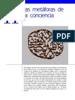 11. Las metáforas de la conciencia (27 págs.)