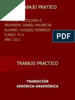TRANSICION AEROBICA ANAEROBICA