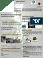 poster a4.pdf