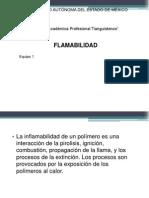 Flamabilidad.pptx