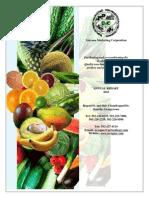Annual Report Gmc 2010