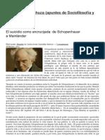 El suicidio como encrucijada_ de Schopenhauer a Mainländer « El vuelo de la lechuza (apuntes de Sociofilosofía y Literatura)
