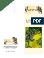 Monarch Life Migration