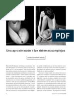 Martínez, Una aproximación a los sistemas complejos