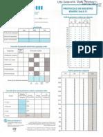 wppsi-3-protocolo-de-registro-2-6-3-11