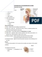Anatomy and Physiology of the Respiratory System (Handouts)