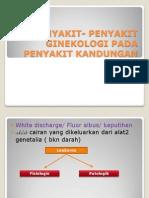 Penyakit- Penyakit Ginekologi Pada Penyakit Kandungan