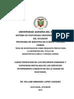 Tesis Dr Lopez