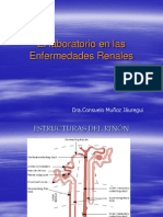 p. Funcion Renal1