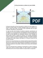 Reactor Anaeróbico de Flujo Ascendente con Manto de Lodos