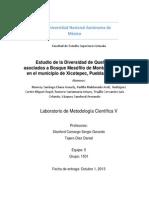 Estudio de la diversidad de artrópodos quelicerados del municipio de Xicotepec, Puebla, México.
