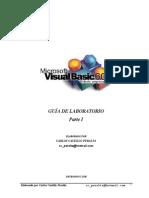 GuíaVB_N1