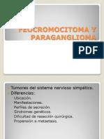 Feocromocitoma y Paraganglioma