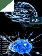 EEG Proiect 2