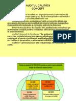 auditul_calitatii