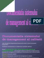 documentatiasistdemanagemet_m2_13_