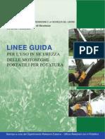 ISPESL_Motoseghe_potatura_Linee_guida (1).pdf