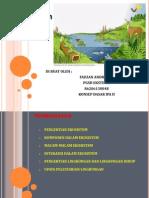 Ekosistem Dan Lingkungan