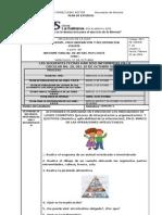 Ciencias Tercero. Ivp. Prof. Pilar Carvajal.
