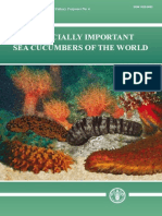 Commercially Important Sea Cucumbers of the World