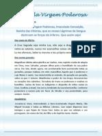 Terco_da_Virgem_Poderosa.pdf