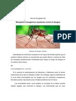 Mosquitos transgénicos ayudarían contra el dengue