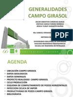 Generalidades Campo Girasol