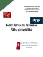 Gestio Proyectos Inv Publica