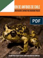 Ranas Chilenas, Conservacion de Anfibios