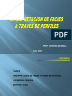 Tema 3. Interpretacion de Facies en Perfiles