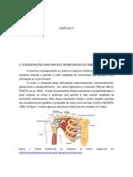 Anatomia Do Ombro