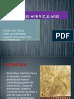 OXIUROS DIAPOSITIVA