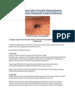 Nyamuk Sebagai Vektor Penyakit