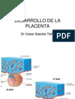 Desarrollo de La Placenta