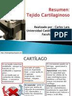 cartilago-111222180659-phpapp01