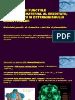 Unitatea 2 Struct&Functiile Mat Genetic