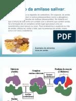 bioquimica - apresentaçao