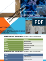 Streptomyces Griseus y Streptomyces Fradiae