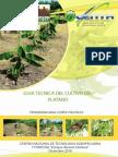 Guia Cultivo Platano 2011